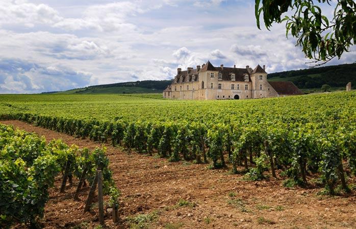 Stop by the Château du Clos de Vougeout for delicious Burgundy wine