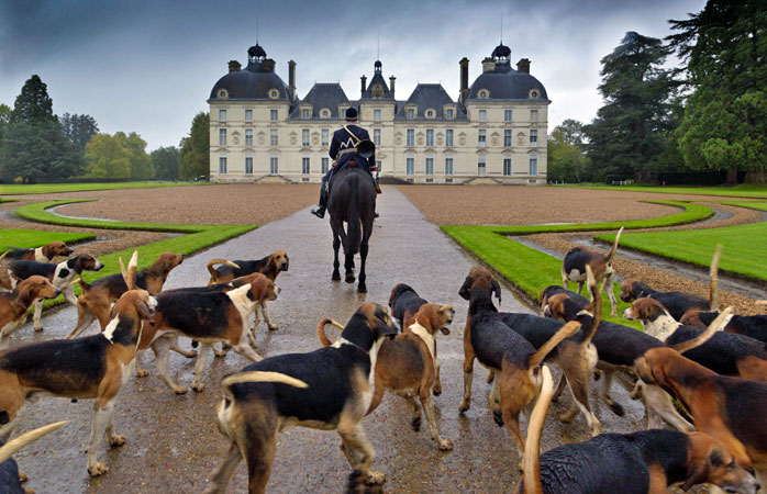 Getting ready for the chasse a courre at Château de Cheverny