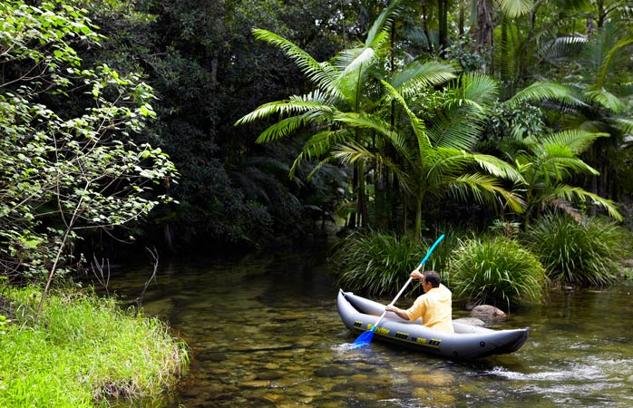 Kayaking your way through the Wet Tropics of Queensland is one way of discovering the expansive rainforest