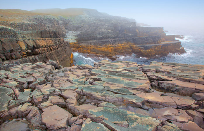 Fossils galore: Mistaken Point is home to the oldest fossils in the world