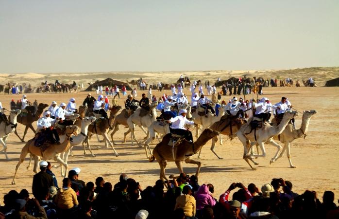 Camel-racing in the desert