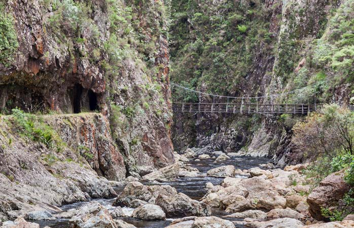 Explore the tunnels and hidden walkways at Karangahake Gorge