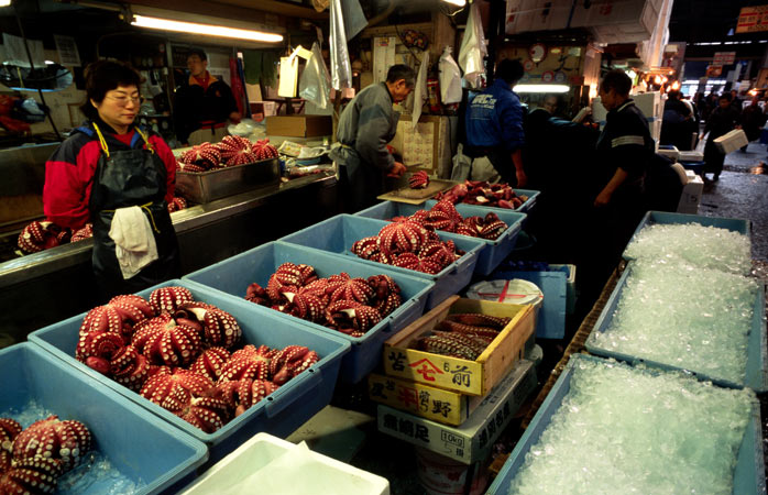 Tokyo's Tsukiji Fish Market is a fundamental part of the city's history and heritage