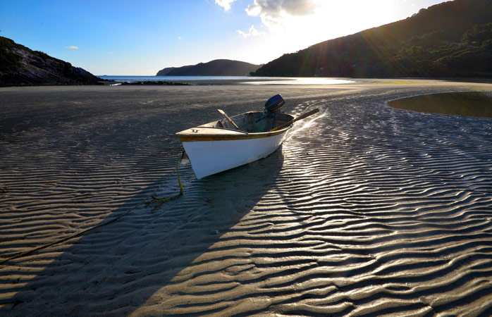 Find a moment of tranquility on the sand dunes of the Great Barrier Island