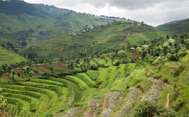 Rwanda reborn: touring Africa's newest sustainability star