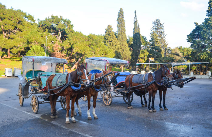 Say goodbye to motor vehicles - the horse remains the main form of transport on these rustic islands in the Sea of Marmara