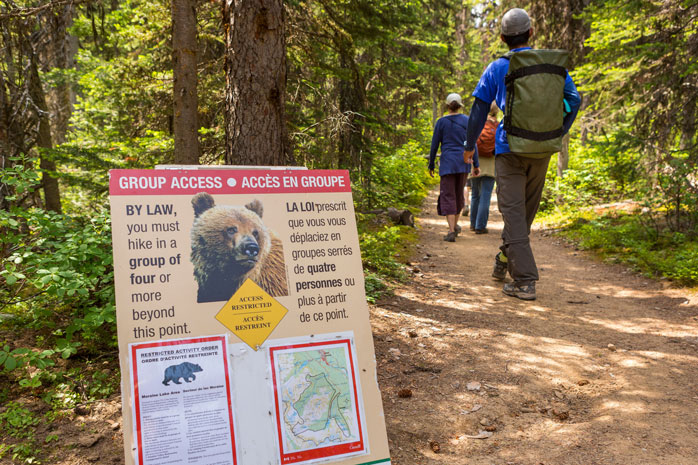 Don't forget to bring your bear spray, when you go hiking in Banff – our furry friends are often spotted along the trails