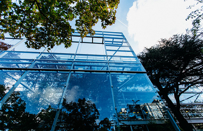 9-fondation-cartier-contemporary-art-things-to-see-in-Paris
