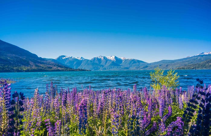 September to November is spring time in Patagonia