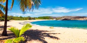 Cheap Car Rentals In Vieques From Just 30 Momondo