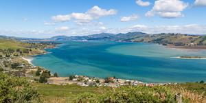 Car Rental in Dunedin