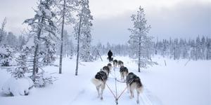 Car Rental in Kuusamo