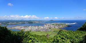 Car Rental in Jeju City