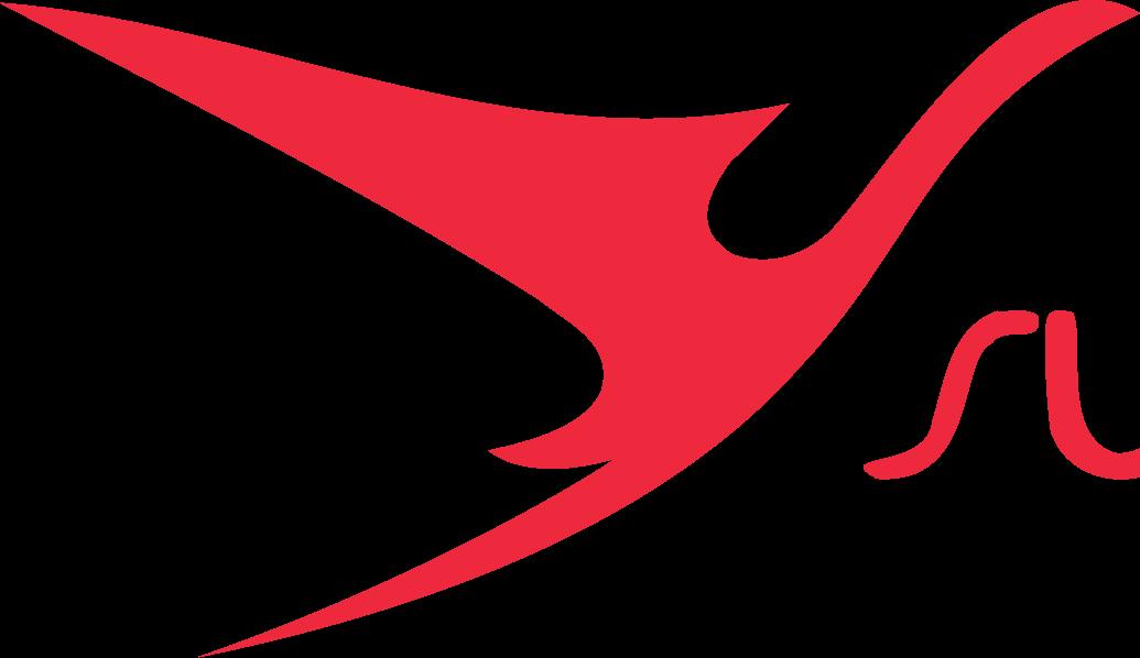 Surinam Airways