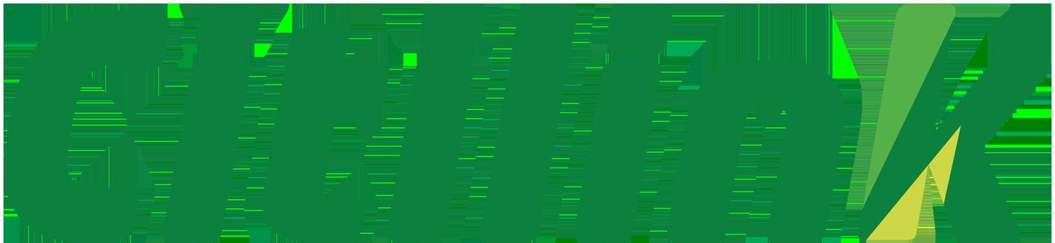 Citilink